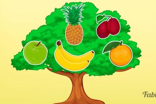 5ac7c266ff02 Загадайте желание и выберите фрукт. А теперь давайте узнаем, что вам  предскажет волшебное дерево